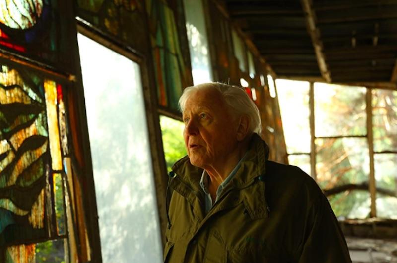 Críticas Crítica De David Attenborough Una Vida En Nuestro Planeta Documental De Alastair Fothergill Jonathan Hughes Y Keith Scholey Netflix Otros Cines